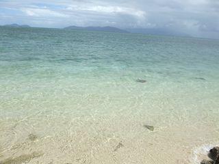 綺麗な海~