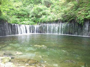 白糸の滝2010晴れバージョン!